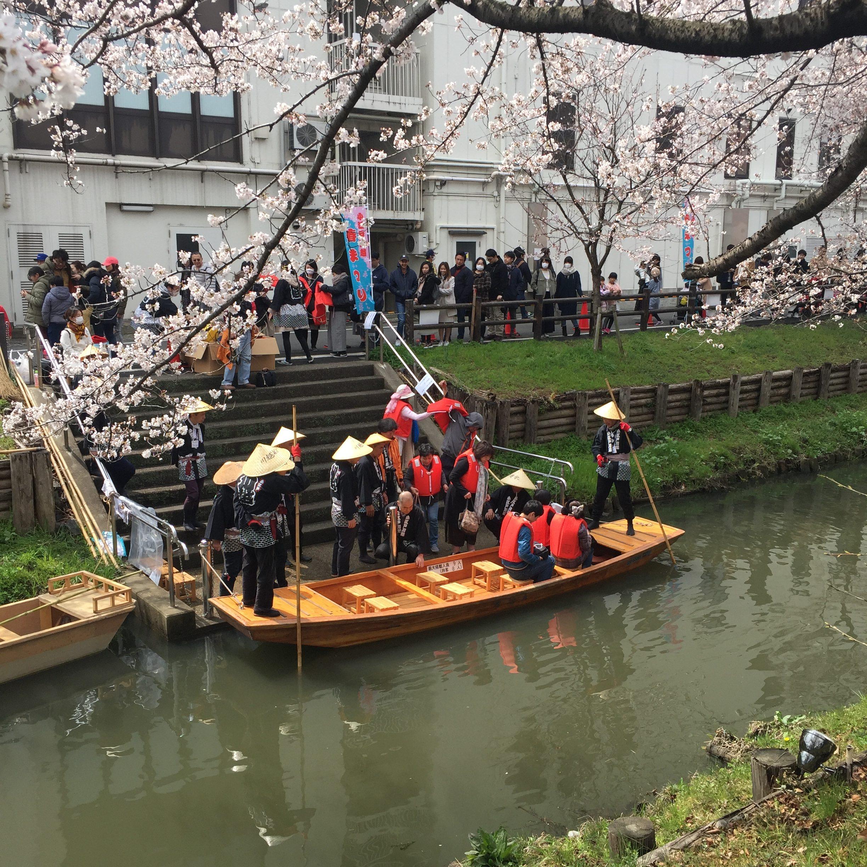 小江戸川越春祭り 舟遊