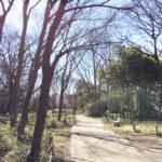 歩道も整備されています-仙波河岸史跡公園