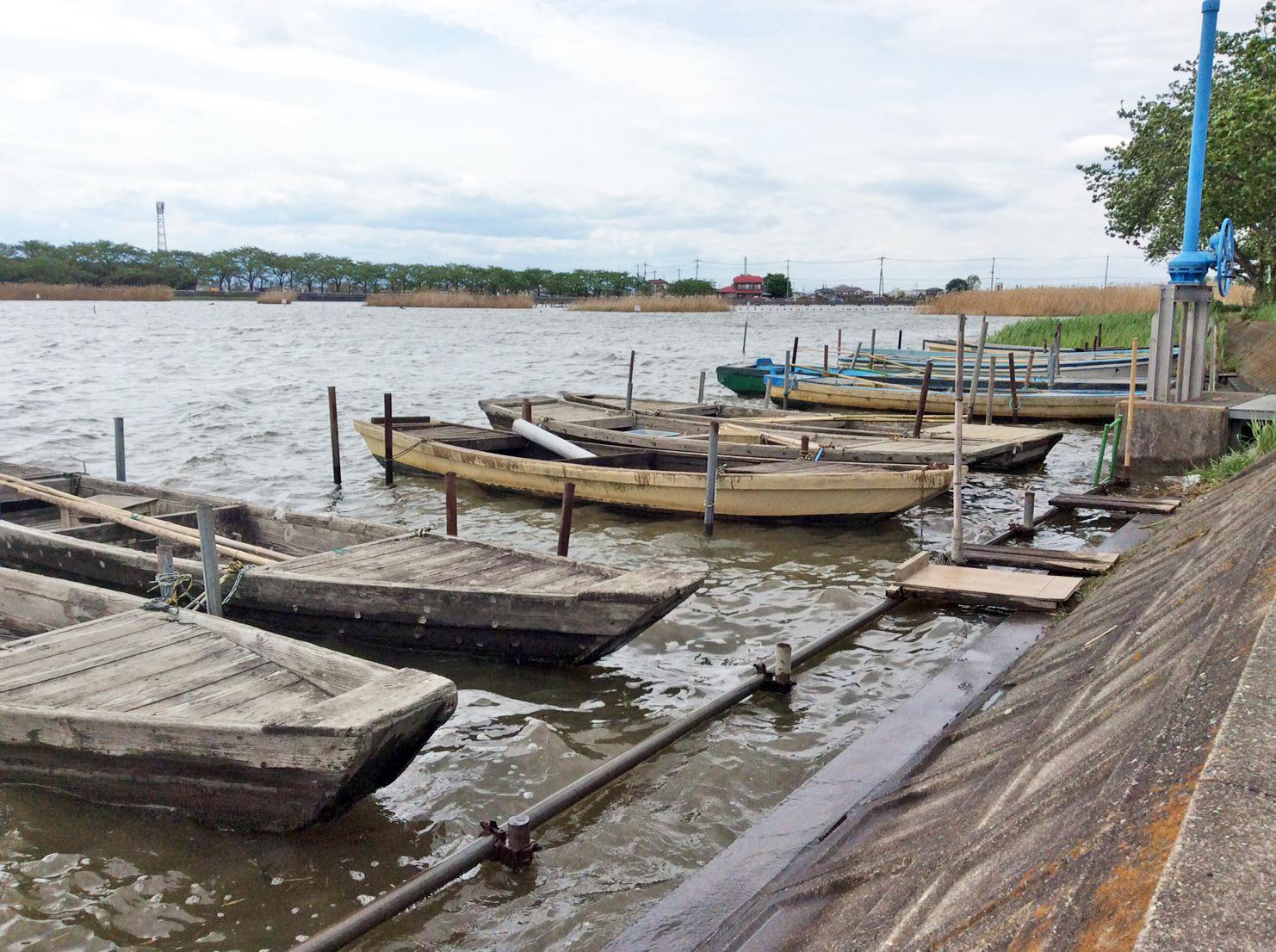 Isanuma old unused boats