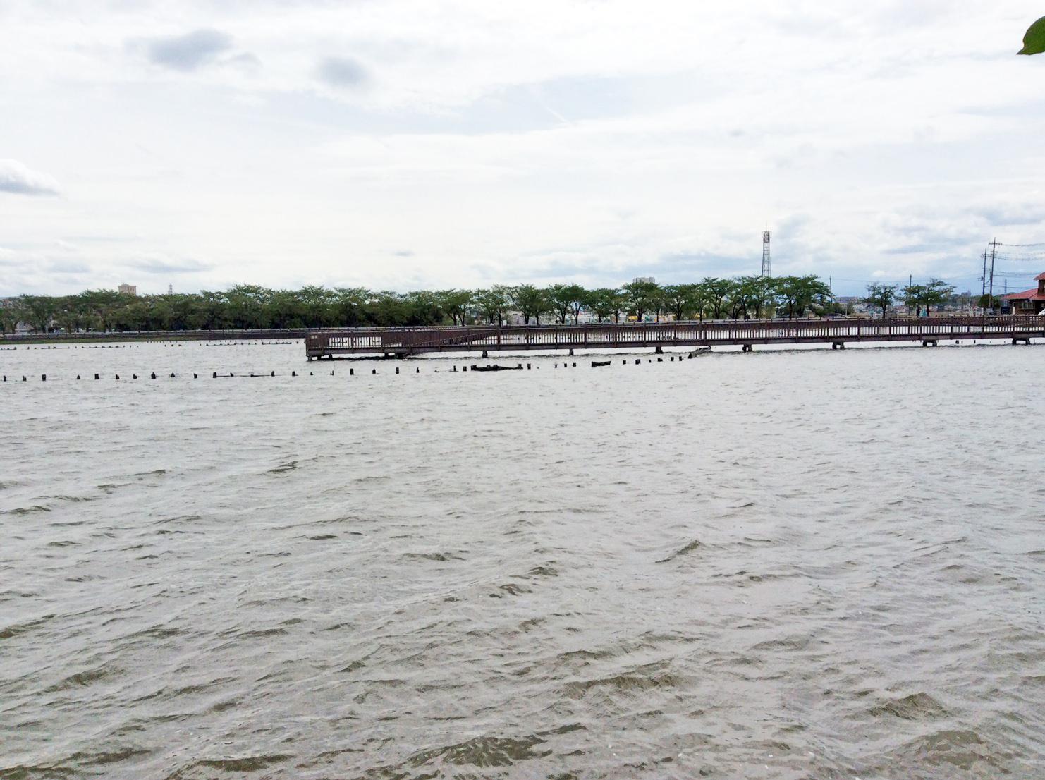 Isanuma boardwalk
