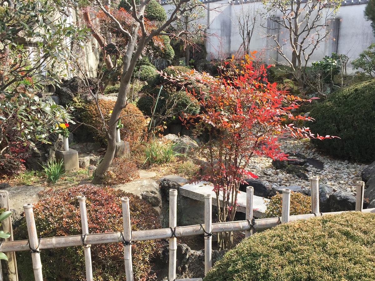 妙昌寺 庭園