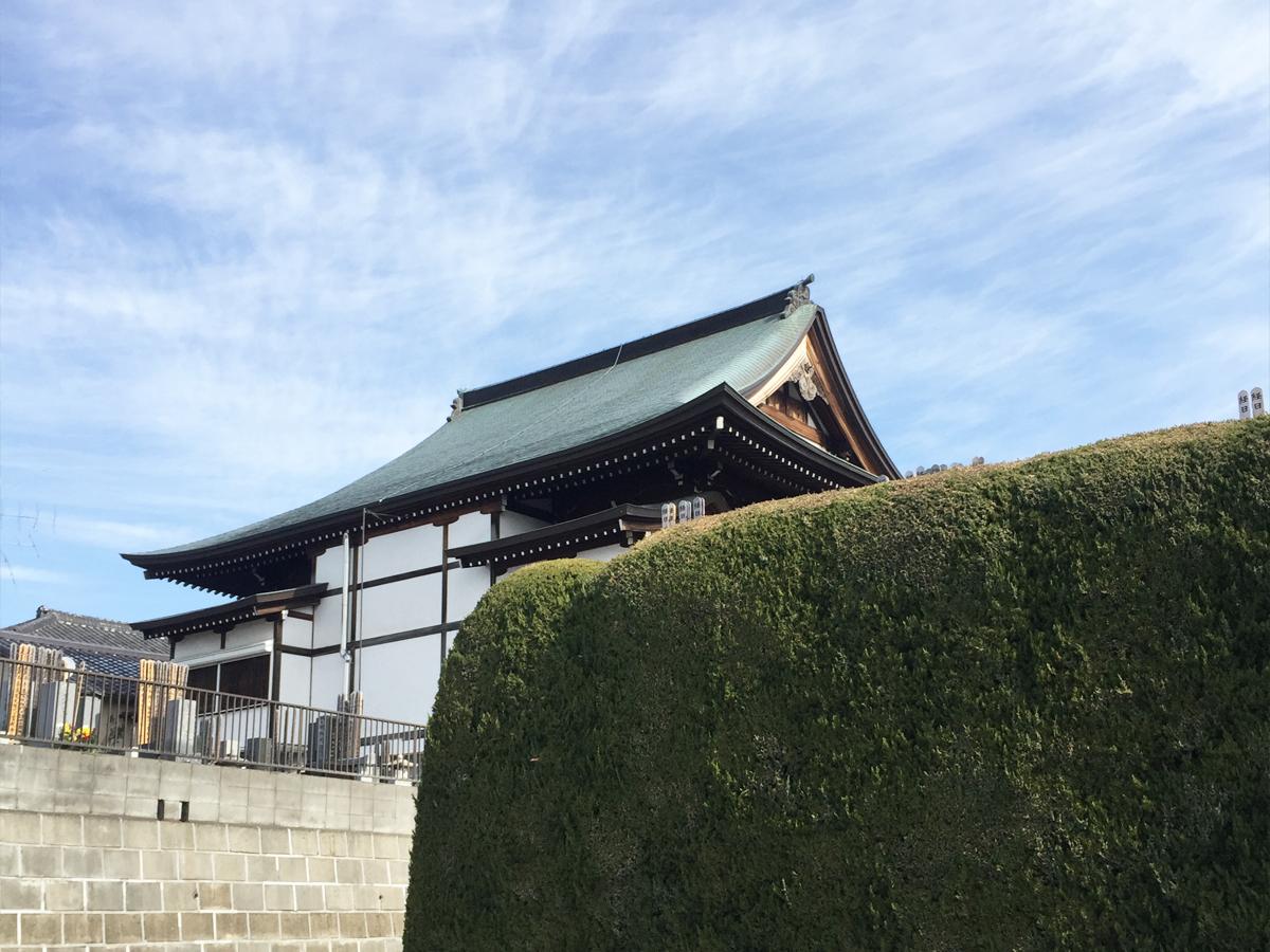 妙昌寺 緑の壁