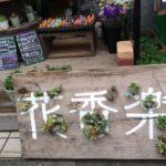 花香楽 (かから)