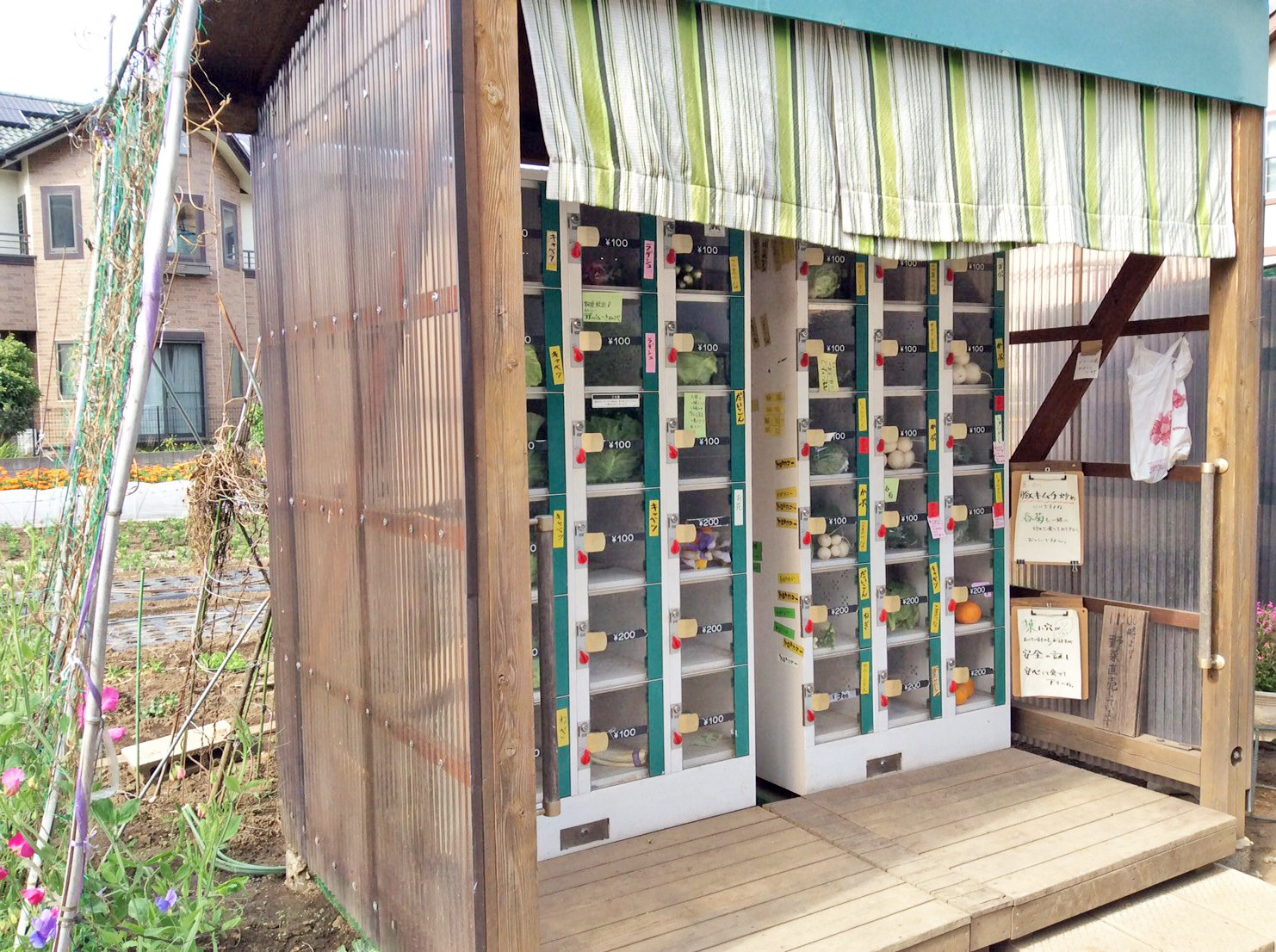 a vending machine for fresh local vegetables